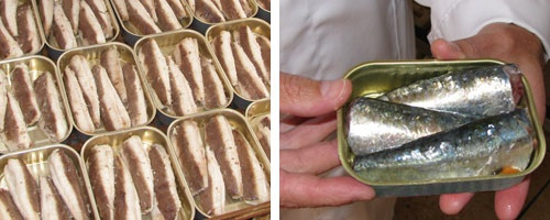 Crown Prince canned sardines, inspected on site by Crown Prince President Dustan Hoffman (photos by Dustan Hoffman)